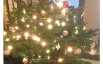 Insta – Getting into the festive spirit!