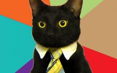 Hiring right meow!