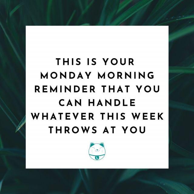 Happy Monday from Lucky Cat team! Hope everyone has an awesome week 😺  #monday #mondaymorning #newweek #mondaymotivation #inspirationalquotes #motivation #motivationalquotes #london #soho #website
