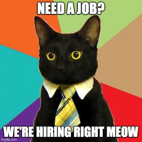 We Are Hiring! 🤩  We are now looking for a committed runner to join our boutique post production house! 😺  More info on our website & LinkedIn profile x  Please send CVs and short covering letter to: bookings@luckycatpost.co.uk  #hiring #postproduction #runner #runnerjob #londonjobs #videopost #newopportunities #jobsearch #jobopportunity #soho #london #hospitality #website